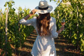 тенденции на виното