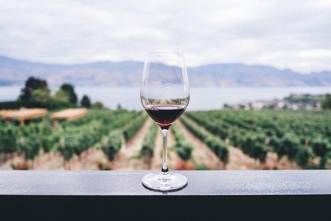 митовете за виното